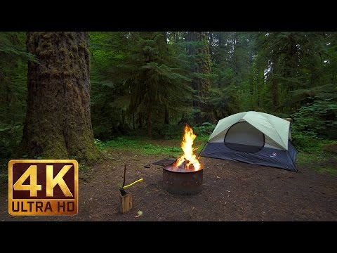 Crackling Forest Campfire - Relaxation Video in 4K - 3 HRS for Relaxation and Meditation - Part 3