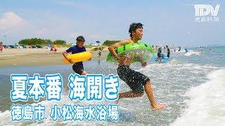 夏本番海開き 徳島市の小松海水浴場