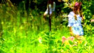Trummer&Scholz - Emma´s illusions