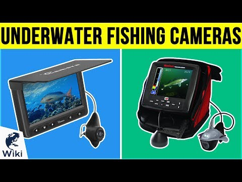 8 Best Underwater Fishing Cameras 2019