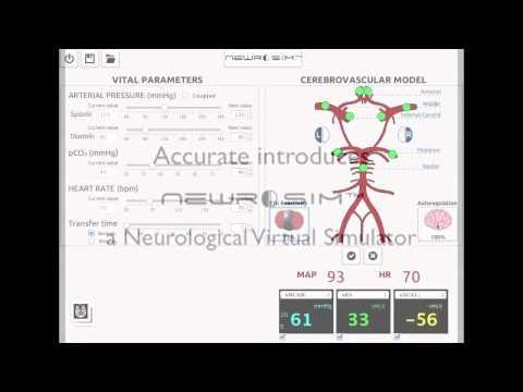 Виртуальный неврологический симулятор
