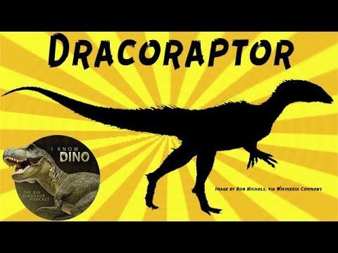 Dracoraptor: Dinosaur of the Day