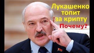 Почему Лукашенко топит за криптовалюту Bitcoin? Парк Высоких Технологий ПВТ Беларусь Ethereum Ripple