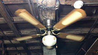 """Dynasty Hugger Ceiling Fan 52"""" Model CF-HA52 (Cane/Light)(No Commentary)"""