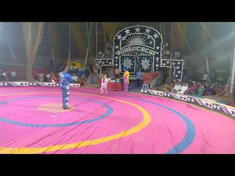 The Great Bombay circus show