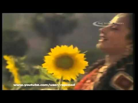 Tamil Movie Song   Thanga Manasukkaran   Poothathu Poonthoppu Paathu Paathu