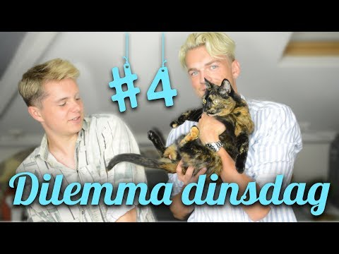 DIETIM OF RAPPER SJORS? (Sean Demmers) | Dilemma dinsdag