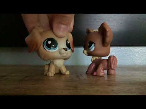 Lps music video: I hate you I love you Gnash CLEAN
