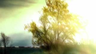 Anathema - Temporary Peace - Biwako