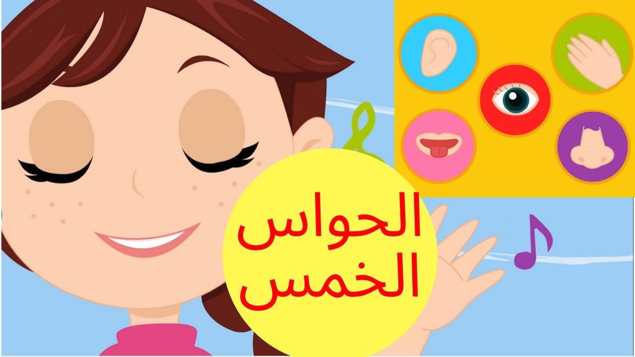 عالم مرح: الحواس الخمسة -  the 5 senses songs