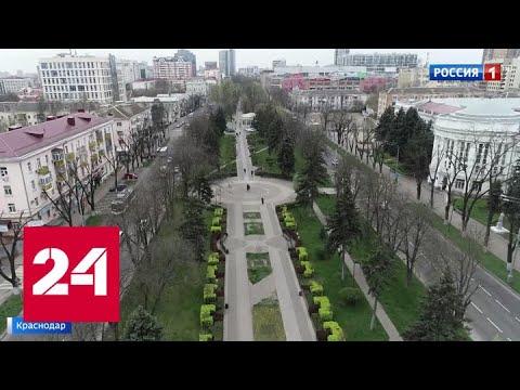 Самоизоляция в действии: улицы Краснодара опустели - Россия 24