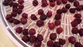 Как сушить вишню (с косточкой). Заготовка вишни на зиму.