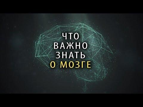 Что Важно Знать КАЖДОМУ о Мозге [5 ФАКТОВ]