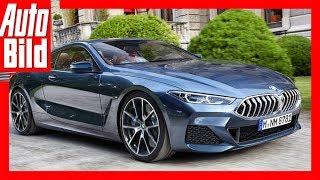 Zukunftsaussichten: BMW 8er G17 (2018) Details/Erklärung