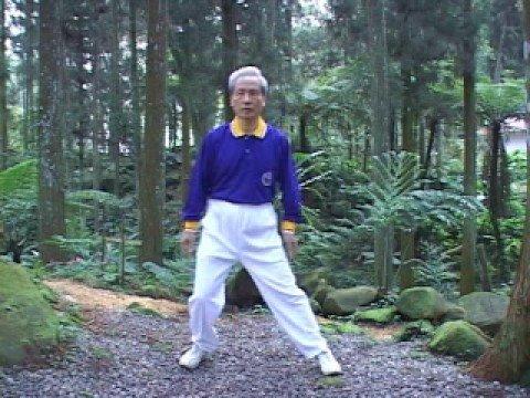 生物能醫學氣功健身運動十七法第4法擺腰夾腿法 - YouTube