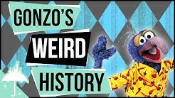 What is Gonzo, Why He Loves Chickens, and More!