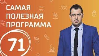 Обманы в интернете и с авто. Выпуск 71 (20.01.2018). Самая полезная программа.