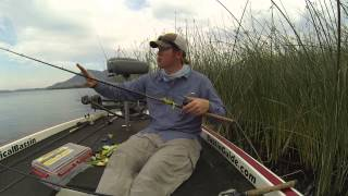 How to Choose the Right Frog for Topwater Fishing