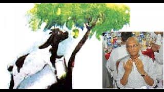 পাঠ্যবইয়ে ছাগল গাছে উঠে আম খায় ও বিভিন্ন ভূলের জন্য মাফ চাইল নাহিদ