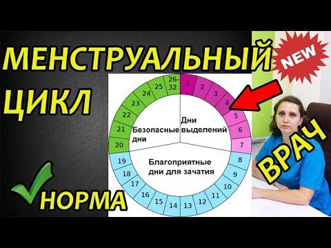 Менструальный цикл: норма, сбои, нарушения. Сколько дней длятся месячные