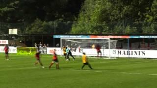 Hampton & Richmond Borough FC | The Beavers