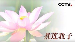 [中华优秀传统文化]煮莲教子| CCTV中文国际