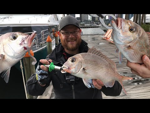 FISHING the most liveable City in the WORLD!  ( Docklands -