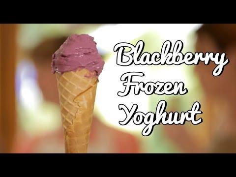 Blackberry Frozen Yoghurt Recipe