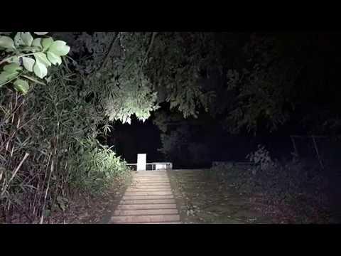 超怖い心霊 Ghost Live Distribution