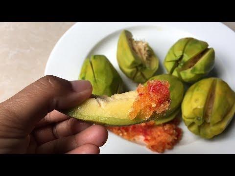 ambarella-with-salf-and-chili-បុកអំបិលម្ទេសញុាំជាមួយម្កាក់