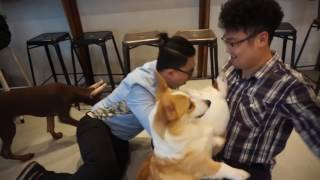 Thanks Billy and Sung kee for coming out and being my pack boi - Do...