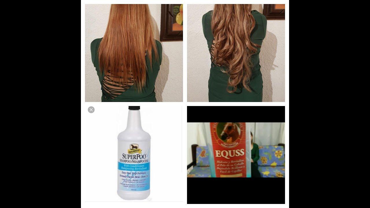 shampoo para caballo EQUSS y SUPER POO, mito o realidad