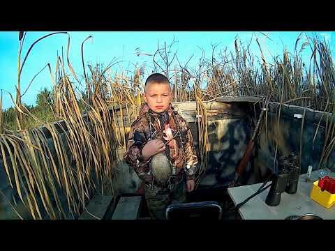 Охота с сыном 07 09 2019, охота на утку
