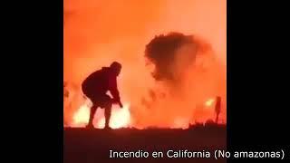 ESTO NO PUEDE SEGUIR PASANDO... REFLEXIÓN AMAZONAS