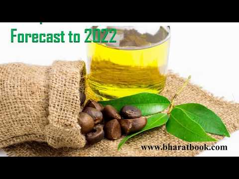 Europe Camellia Oil Market Forecast to