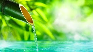 Relaxing Music 24/7, Meditation, Healing, Sleep Music, Zen, Calm Music, Sleep, Yoga, Study, Relax