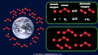How Chlorofluorocarbons Affect The Ozone Layer (Ryan Smith)