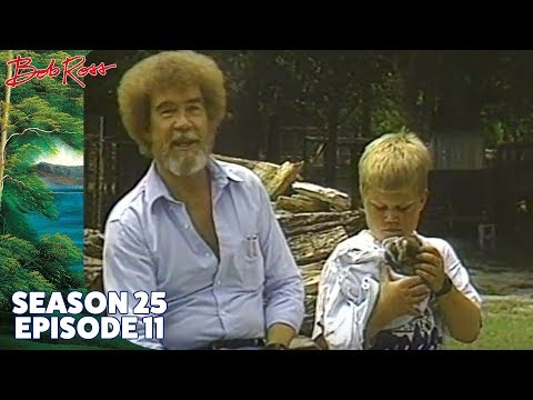 Bob Ross - Fisherman's Paradise (Season 25 Episode 11)