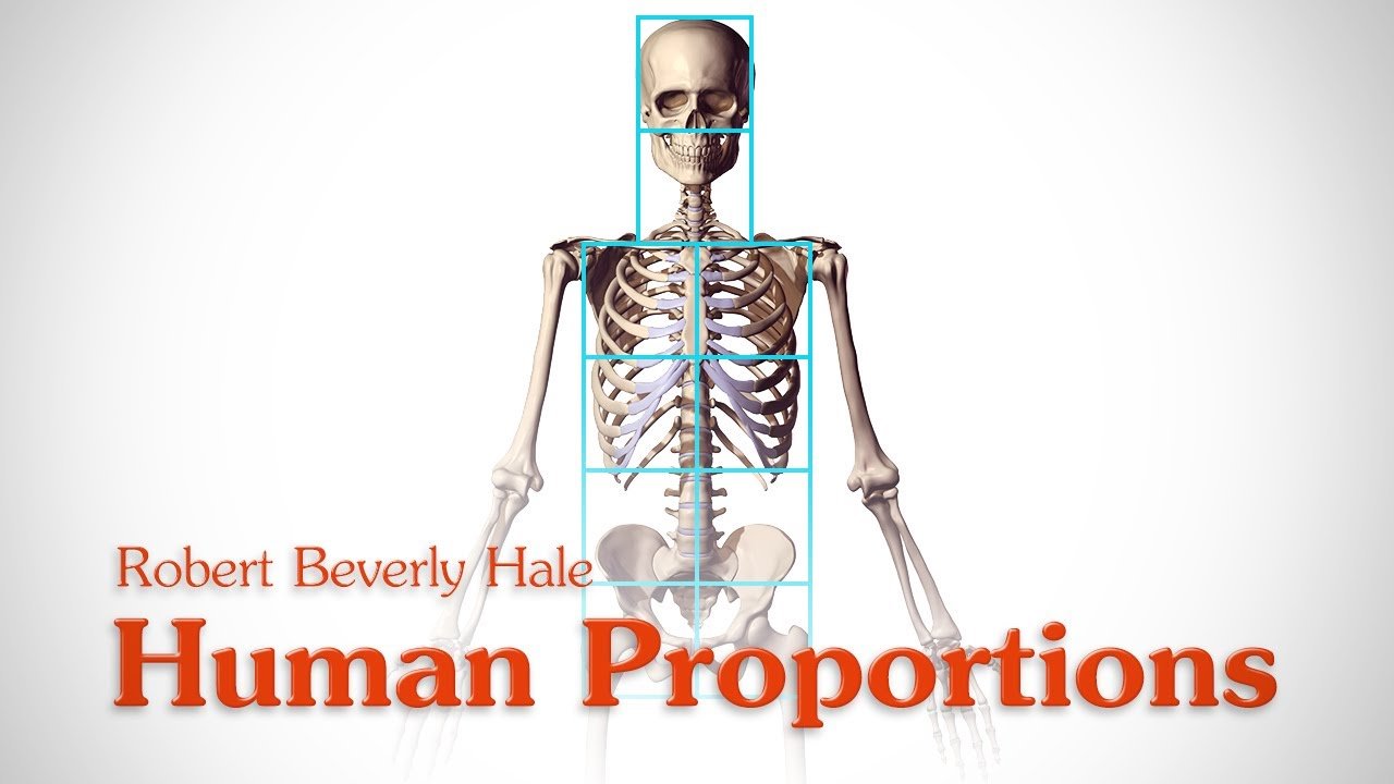 Human Figure Proportions - Cranial Units - Robert Beverly Hale - YouTube