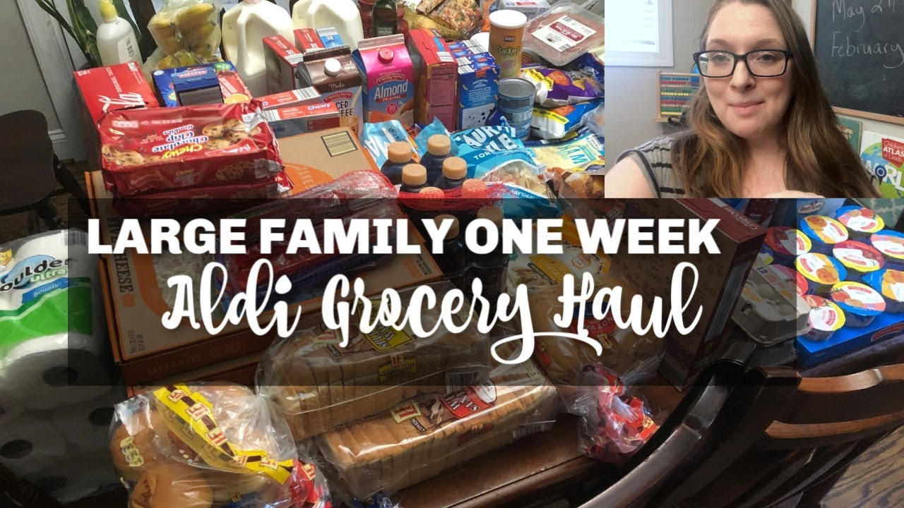 Large Family Aldi Meal Plan & Grocery Haul - Summer - Simple