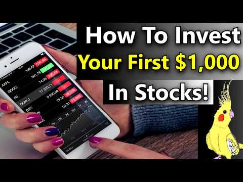How to Invest $1,000 In the Stock Market 📈 How Should I Invest $1,000 In The Stock Market?