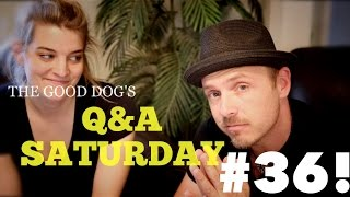 The Good Dog's Q&a Saturday: Episode #36 (answers For 6/13/15)