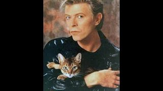 David Bowie. Are There Cats on Mars?