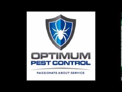 Optimum Pest Control radio advert