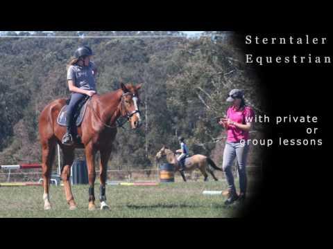 Sterntaler Equestrian