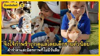 จิงโจ้กำพร้าถูกดูแลโดยเด็กชายตัวน้อย คำร่ำลาและมิตรภาพที่ไม่มีวันลืม   Dog's Clip