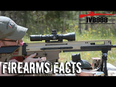 Firearms Facts: What Is A DMR?