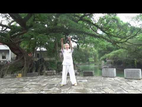 Professor Wang XiaoJun Pat/Slap Exercise