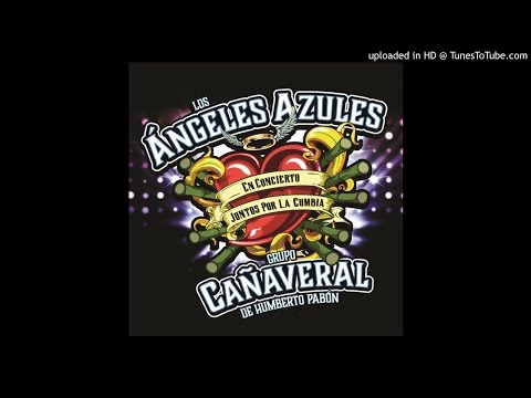 Tiene Espinas El Rosal (feat. Jenny and the Mexicats) Grupo Cañaveral De Humberto Pabon