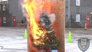 Watch a Christmas tree go up in smoke